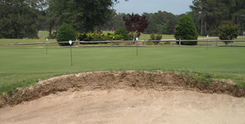 Lakewood Golf Chipping Green